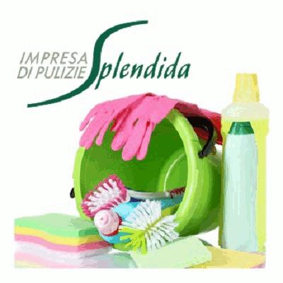 Impresa di Pulizie Splendida - Imprese pulizia Alba