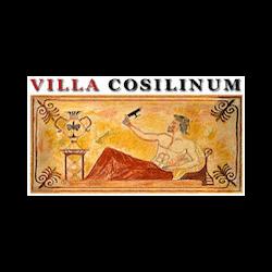 Albergo Villa Cosilinum di Cancellaro Alfeo & C. Snc - Alberghi Padula
