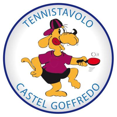 Tennistavolo Castel Goffredo - Sport - associazioni e federazioni Castel Goffredo