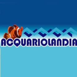 Acquariolandia - Acquari ornamentali ed accessori Pescara