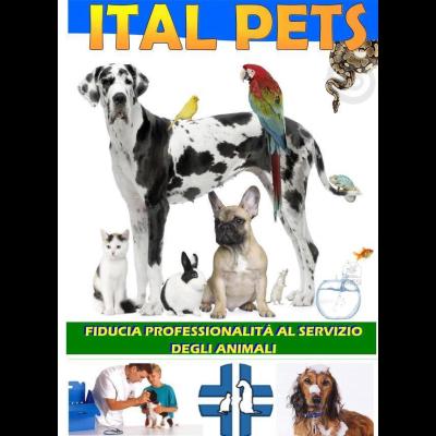 italpets - Animali domestici, articoli ed alimenti - vendita al dettaglio Giugliano in Campania
