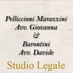 Studio Legale Pelliccioni-Barontini - Avvocati - studi Porcari