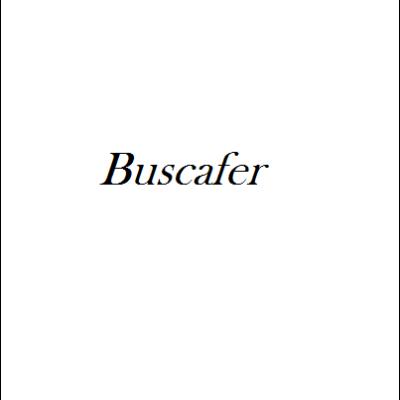 Buscafer - Ferro Busca