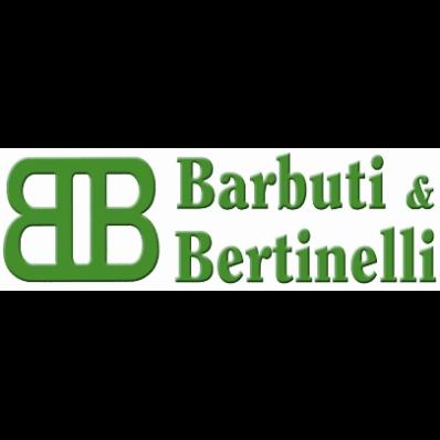Barbuti e Bertinelli Impianti - Energia solare ed energie alternative - impianti e componenti Medesano