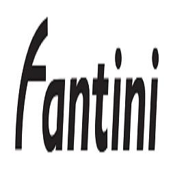 Fantini Noleggio Bus - Autonoleggio Reggio nell'Emilia