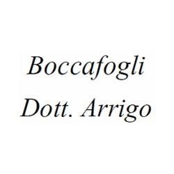Boccafogli Dott. Arrigo Allergologo - Medici specialisti - allergologia Ferrara