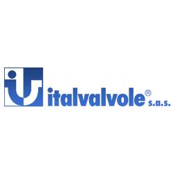 Italvalvole® S.a.s - Valvole industriali Cossato