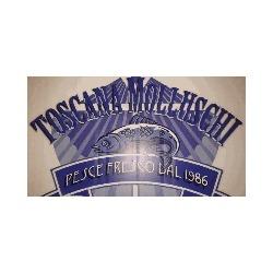 Toscana Molluschi Sas Ingrosso Pesce - Pesci freschi e surgelati - lavorazione e commercio Firenze