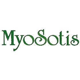 Myosotis - Fiori e piante artificiali - vendita al dettaglio Passo di Treia
