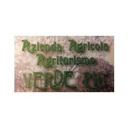 Azienda Agricola e Agriturismo Verde Più - Ristoranti Muggiò