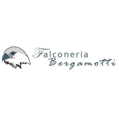 Falconeria Bergamotti S.r.l.s. - Eventi e manifestazioni - organizzazione Palagianello
