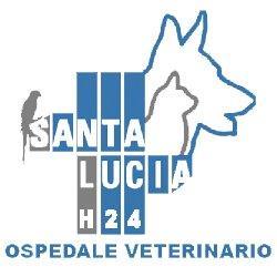 Ospedale Veterinario - Clinica Veterinaria Santa Lucia - Veterinaria - ambulatori e laboratori Verona