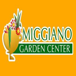 Miggiano Garden Center - Fiori e piante - ingrosso San Cassiano