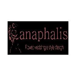 Fioreria Anaphalis Centerflora - Eventi e manifestazioni - organizzazione Cento