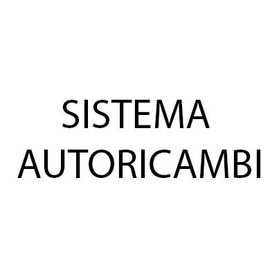Sistema Autoricambi - Autoaccessori - commercio Susa