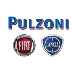 Pulzoni Fiat - Automobili - commercio Cesena