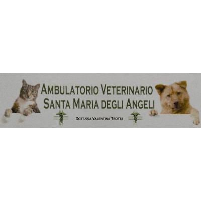 Ambulatorio Veterinario Santa Maria Degli Angeli - Veterinaria - articoli e prodotti Nocera Inferiore