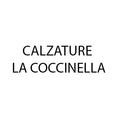 Calzature La Coccinella - Calzature - vendita al dettaglio Pavullo nel Frignano
