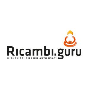 Ricambi Guru - Ricambi e componenti auto - commercio Veggiano