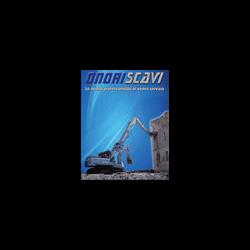 Onori Scavi - Macchine movimento terra Nettuno