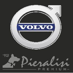 Volvo Concessionaria Pieralisi - Automobili - commercio Ancona