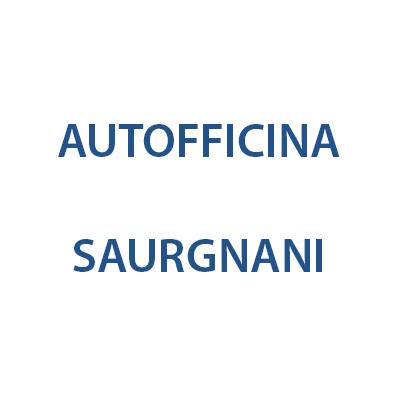 Autofficina Saurgnani - Autofficine e centri assistenza Pozzuolo Martesana