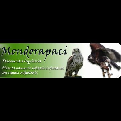 Mondorapaci