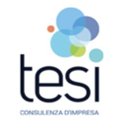 Tesi Srl - Consulenza commerciale e finanziaria Ivrea
