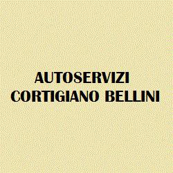 Autoservizi di Laura Cortigiano Lorio Bellini - Pratiche automobilistiche Colle di Val d'Elsa