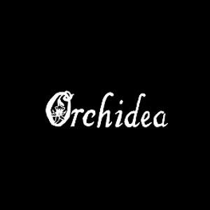 Residenza Orchidea - Residences ed appartamenti ammobiliati Signa