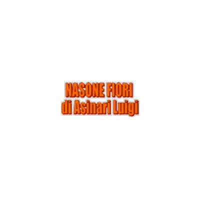 Nasone Fiori  Asinari Luigi - Fiori e piante - vendita al dettaglio Torino