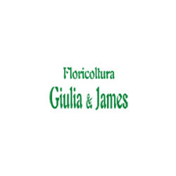 Floricoltura Clamer Giulia - Fiori e piante - vendita al dettaglio Rho