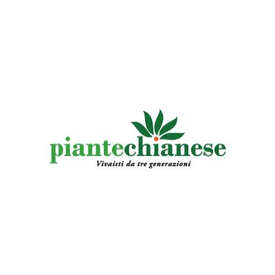 Piante Chianese - Vivai piante e fiori Teano