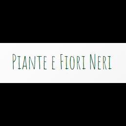 Fiori e Piante Neri Giampiero - Fiori e piante - vendita al dettaglio Roseto degli Abruzzi