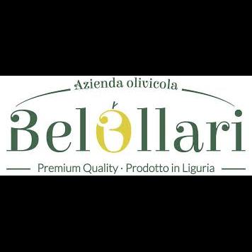 Azienda Olivicola Belollari - Oli alimentari e frantoi oleari Pontedassio