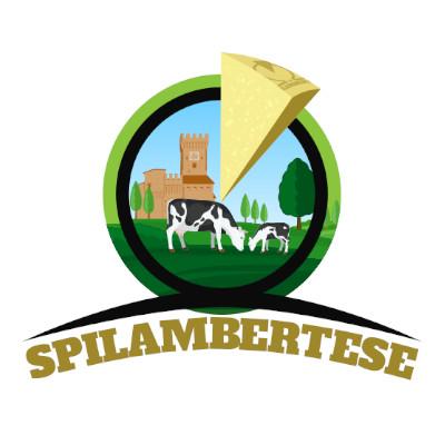 Nuova Cooperativa Casearia Spilambertese