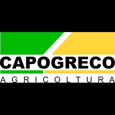 Capogreco Domenico Macchine Agricole - Autofficine e centri assistenza Sant'Ilario dello Ionio