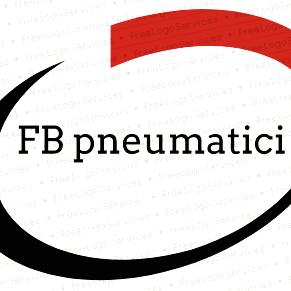 Fb Pneumatici - Pneumatici Commercio e Riparazione - Pneumatici - commercio e riparazione Mondragone
