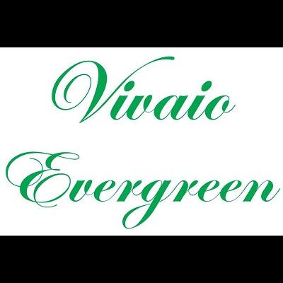 Vivaio Evergreen - Vivai piante e fiori Ardea