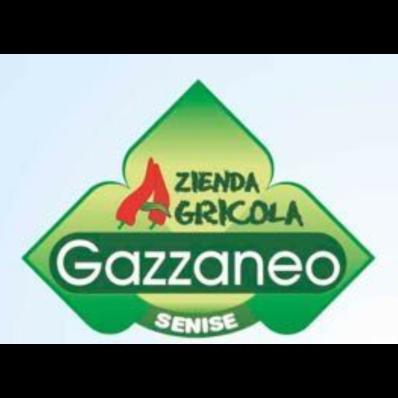 Azienda Agricola Gazzaneo - Ortofrutticoltura Senise
