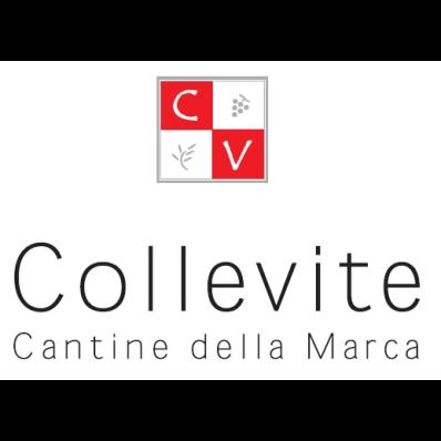 Collevite - Vini e spumanti - produzione e ingrosso Monsampolo del Tronto