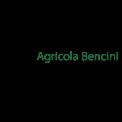 Ab Agricola Bencini Tommaso Bencini - Aziende agricole Firenze