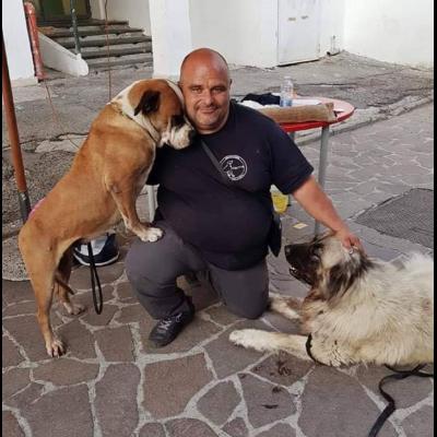 Ivan  Ramo Addestratore Cinofilo - Animali domestici - allevamento e addestramento Castellabate