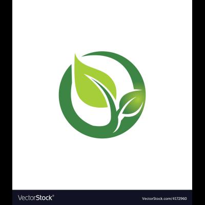 Arredamento per Giardini Privati e Pubblici  Napoli e provincia - Vivai piante e fiori Afragola