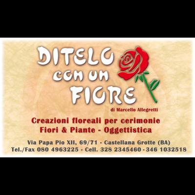 Ditelo con Un Fiore - Fiori e piante - vendita al dettaglio Castellana Grotte