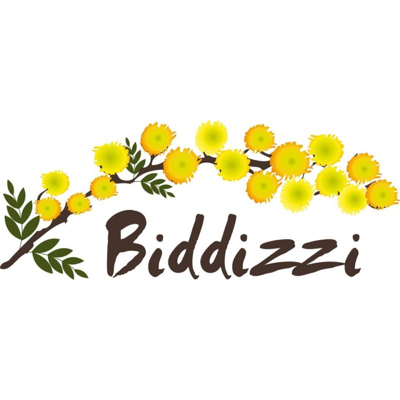 Biddizzi - Parrucchieri - forniture Capo d'Orlando