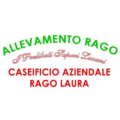 Caseificio Aziendale Pasquale di Rago Laura - Caseifici Matera