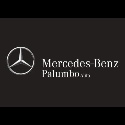 Palumbo Auto - Automobili - commercio Pisa