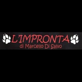 L'Impronta  Marcello di Salvo - Animali domestici - allevamento e addestramento San Pietro Clarenza