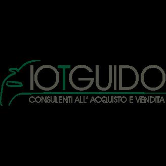 Io Ti Guido - Automobili - commercio Torino